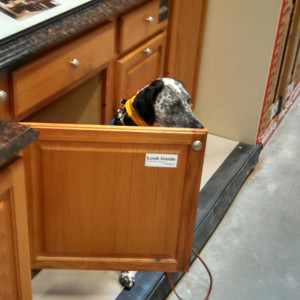 Working at Home Depot...look inside!